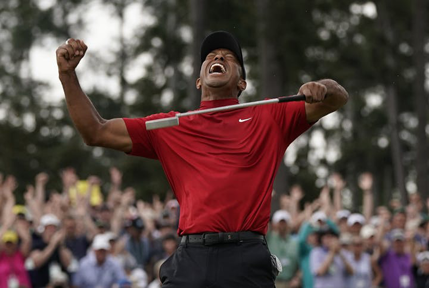 On Sunday Tiger Woods won the annual Masters tournament at Augusta National Golf Club after not having won a major in 11 years.