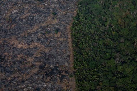 In this aerial image, A section of the Amazon rainforest that has been decimated by wildfires on August 25 in the Candeias do Jamari region near Porto Velho, Brazil. According to INPE, Brazil's National Institute of Space Research, the number of fires detected by satellite in the Amazon region this month is the highest since 2010.