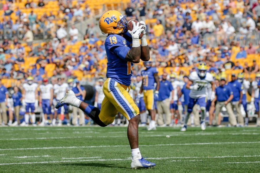 Sophomore wide receiver V'lique Carter (19) pulls in his first receiving touchdown catch out of a streak from the backfield during Pitt's 17-14 win over Delaware.