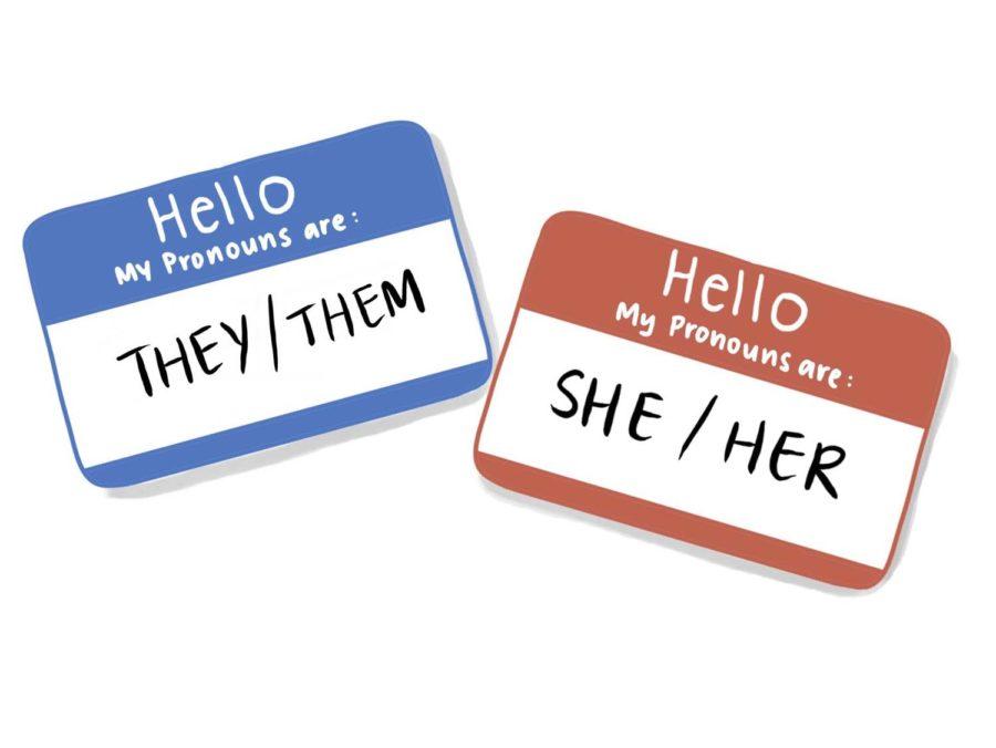 Opinion | No excuses — use people's chosen pronouns