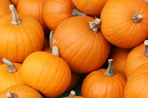 The Pittsburgh Monster Pumpkins Festival will be held Oct. 19 to 20 on the North Shore.