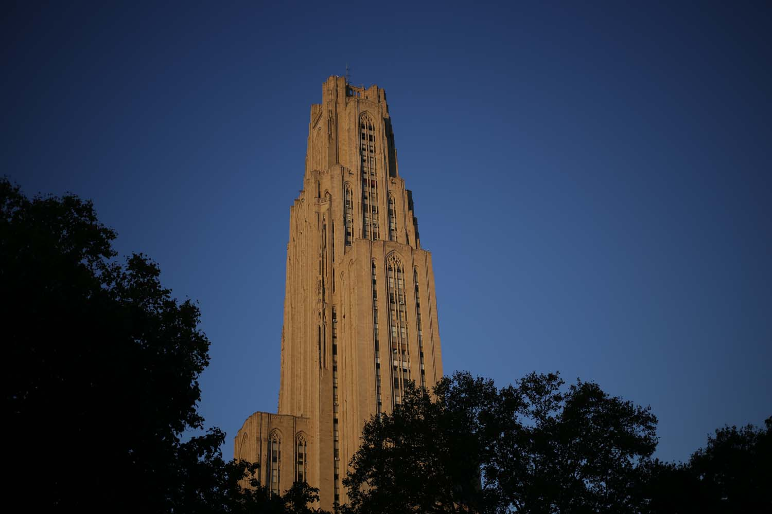A former Pitt employee filed a civil complaint on Oct. 4 against the University in federal court for allegedly firing her based on a disability.