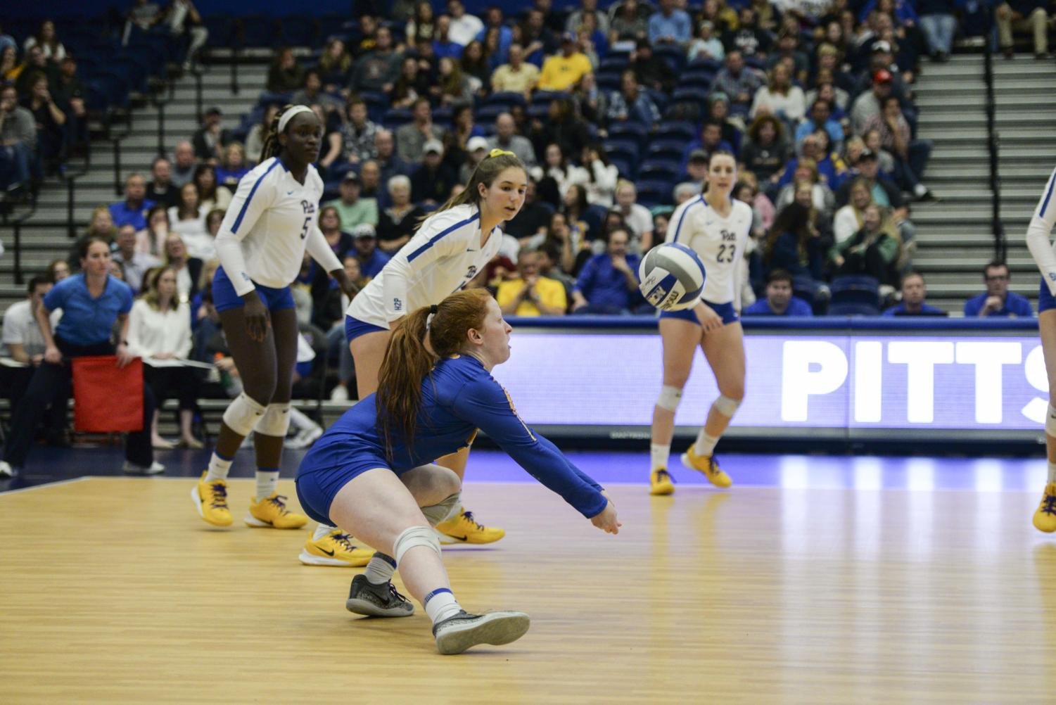 Pitt volleyball continued its win streak this weekend, sweeping both UNC and NC State.