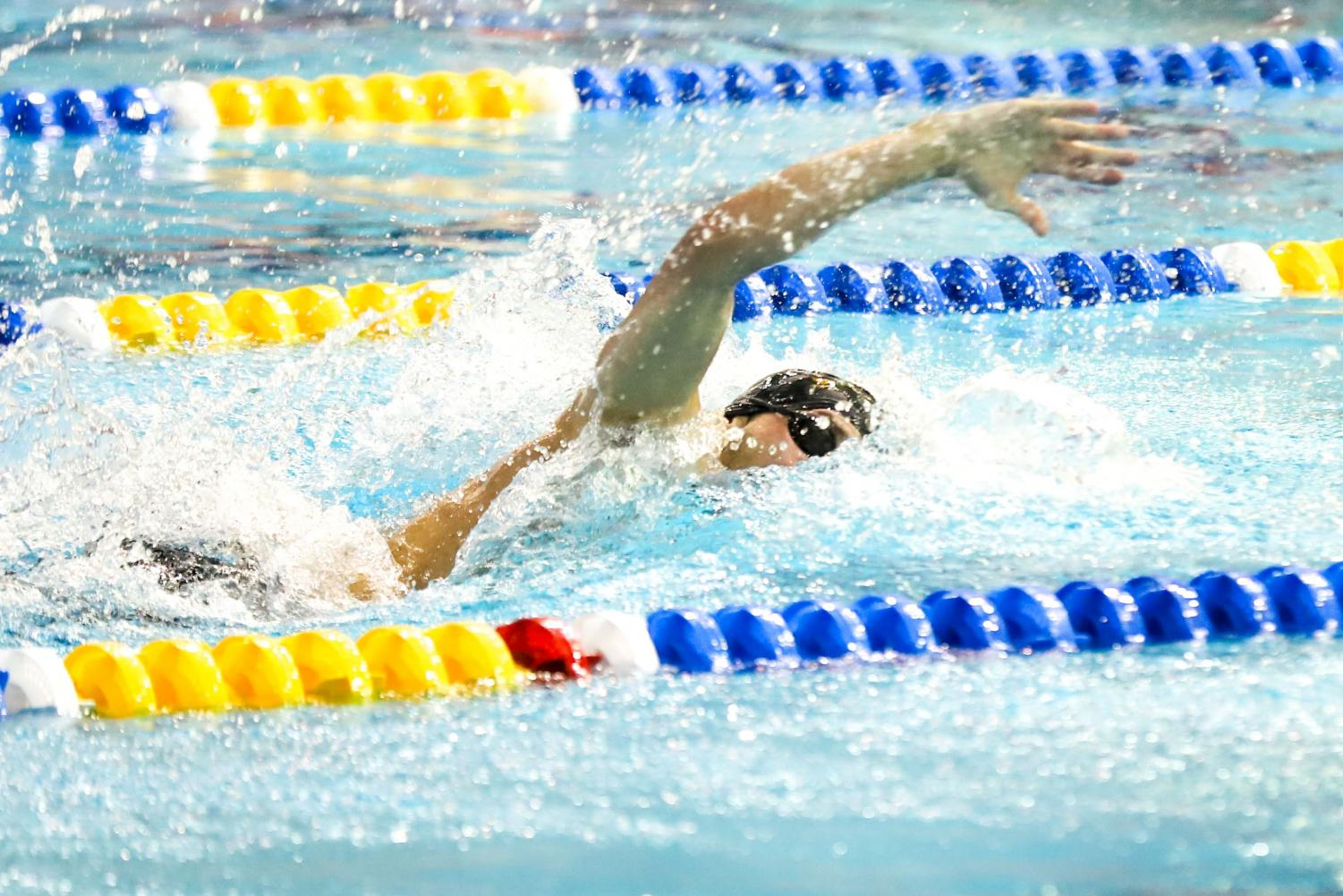 Junior Blaise Vera holds Pitt's school records in the 50- and 100-yard, as well as the 100-yard butterfly.
