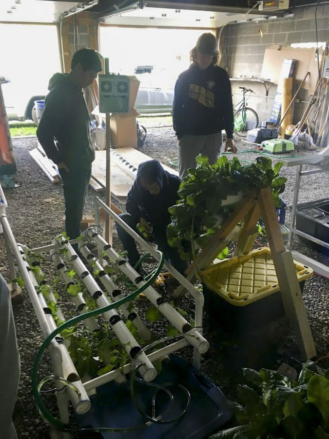 Pitt Hydroponics members work to construct and maintain PVC-pipe hydroponic systems in Homewood, a City neighborhood about 10 minutes east of Oakland.