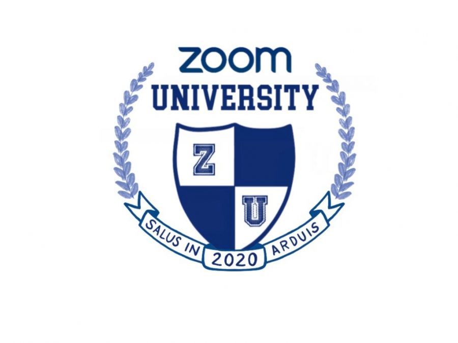 Opinion | Keeping Up With the Columnists: Vignettes from Zoom University