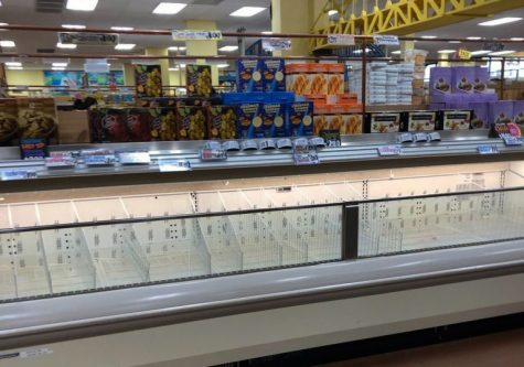 An empty freezer section at Trader Joe's.