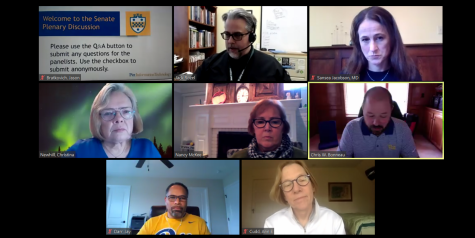 The University Senate held a panel discussion on mental health in academic life during the COVID-19 pandemic Thursday afternoon via Zoom.
