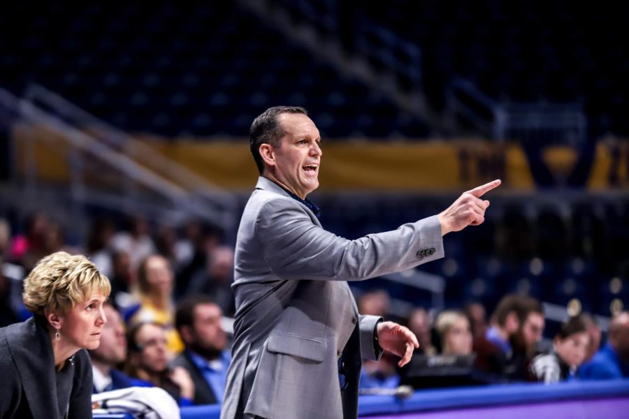 White beginning to lay the base for women's basketball revival