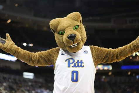 Pitt Athletics announced Tuesday that five other Panther teams will return on June 29.