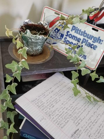 A house plant sits on a college student's desk.