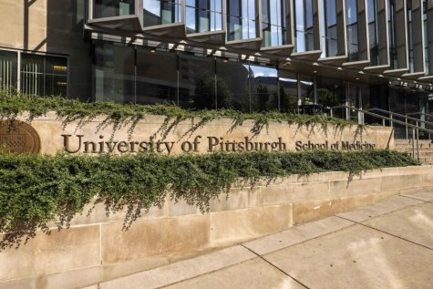 A partnership between the Graduate School of Public Health and the School of Medicine has resulted in the integration of an anti-racism curriculum at Pitt Med.