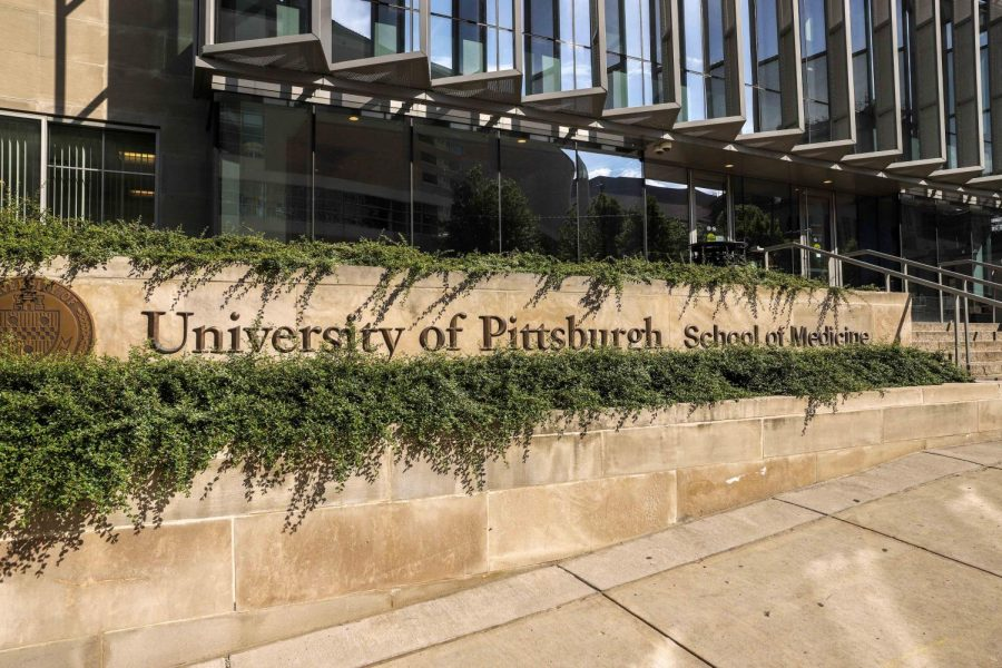 A+partnership+between+the+Graduate+School+of+Public+Health+and+the+School+of+Medicine+has+resulted+in+the+integration+of+an+anti-racism+curriculum+at+Pitt+Med.+