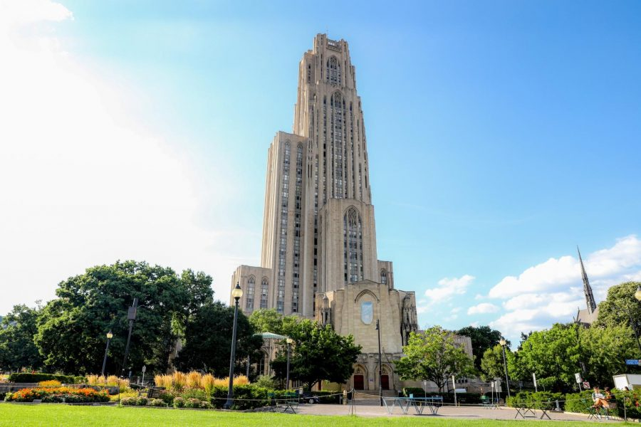 Pitt+adds+11+cases+after+first+week+of+online+classes