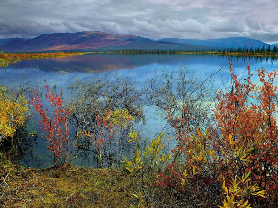 The Trump administration announced Thursday its final plan to open Alaska's Arctic National Wildlife Refuge to oil drilling.