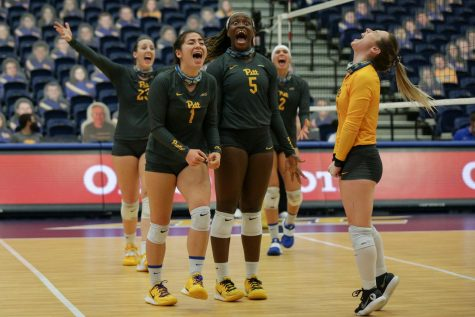The Pitt volleyball team celebrates after scoring the match-winning point against No. 6 Louisville on Friday.