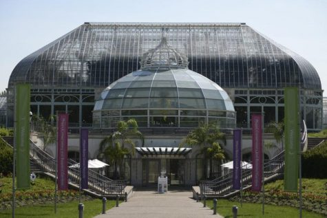 Phipps Conservatory has remained open to the public with online timed tickets.