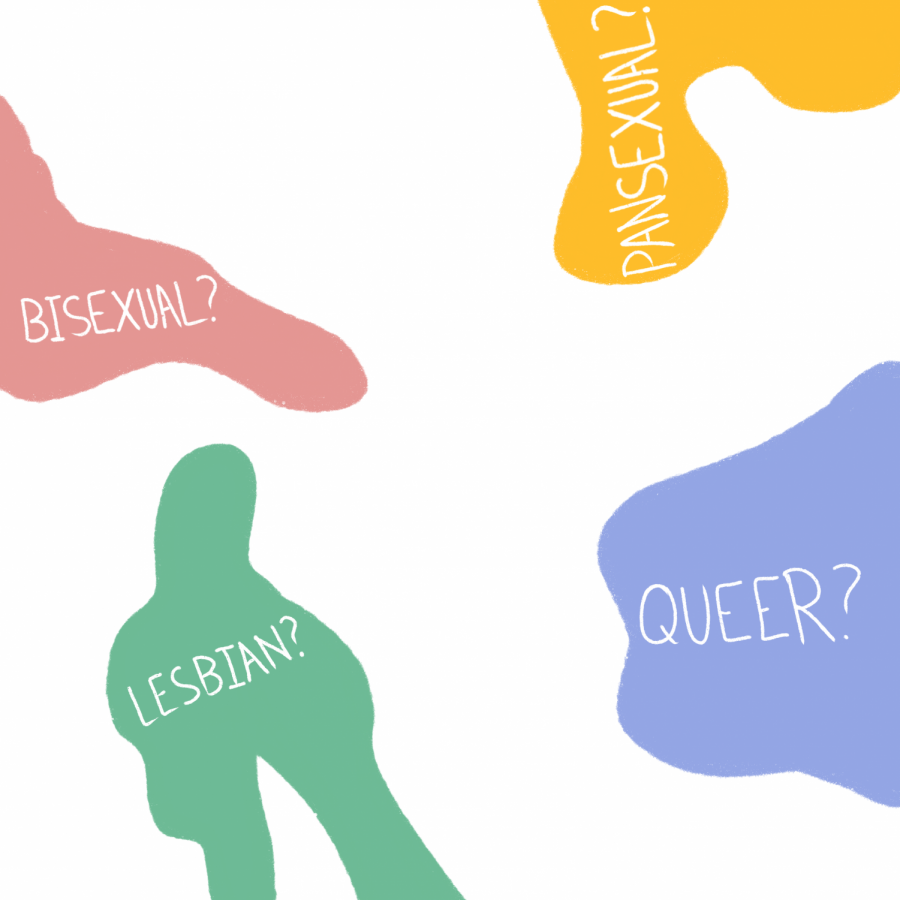 Opinion | You don't have to declare a sexuality