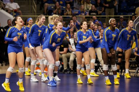 The Division I Women's Volleyball Committee rewarded Pitt (16-4, 14-4 ACC) for its strong conclusion to the regular season, selecting the Panthers to their fifth straight NCAA tournament appearance. Pitt will meet Northeast Conference champion Long Island University (8-5, 8-4 NEC) in its first-round matchup on Wednesday, April 14, at 10:30 p.m.