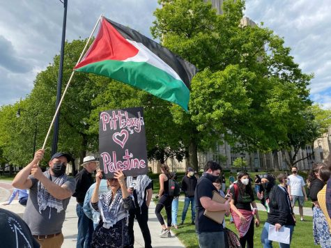 """The Pittsburgh chapters of the Democratic Socialists of America and Council on American-Islamic Relations hosted a """"Stand in Solidarity with Palestine"""" rally at the corner of Forbes Avenue and Bigelow Boulevard on Friday afternoon."""