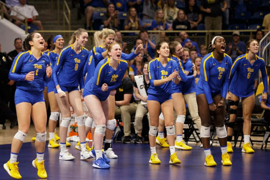 Pitt Volleyball and men's soccer appear primed to repeat and perhaps improve on their already exceptional 2021 seasons. Baseball will need to reload before they can one-up their last record-setting spring.