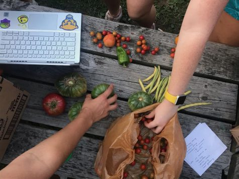 There are a variety of resources for students experiencing food insecurity on campus, including the Plant2Plate Student Garden on Oakland Avenue.