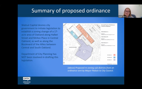 """Oakland community leaders said Wednesday evening that private developer Walnut Capital's current efforts to pass a proposal to reshape vast parts of Central Oakland are an injustice to the community"""" that flies in the face of community-driven redevelopment."""
