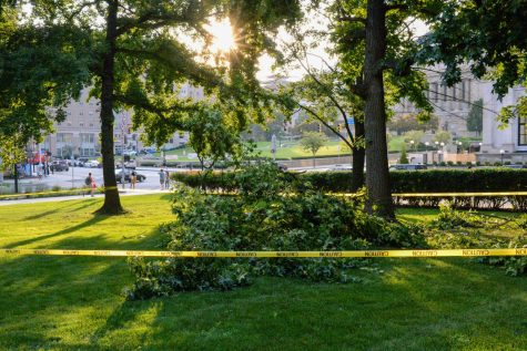 The fallen tree limb on the Cathedral lawn Tuesday evening.