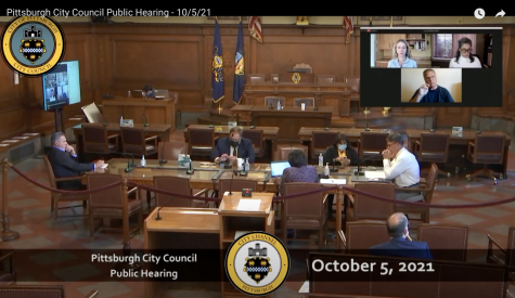 Around 25 community members denounced Walnut Capital's rezoning proposal for Central Oakland at a Pittsburgh City Council public hearing on Tuesday.