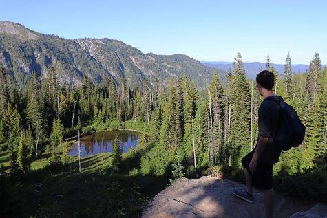 A hiker enjoys the view at Mount Rainier.